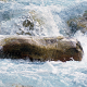 sten.i.vandet